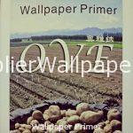 Wallpaper Primer