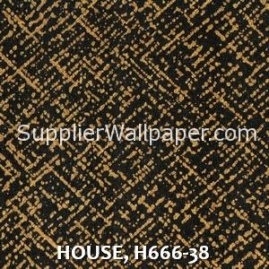HOUSE, H666-38