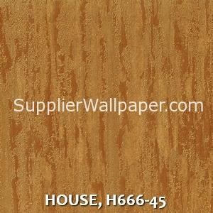 HOUSE, H666-45