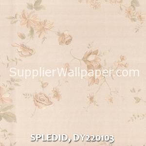 SPLEDID, DY220103
