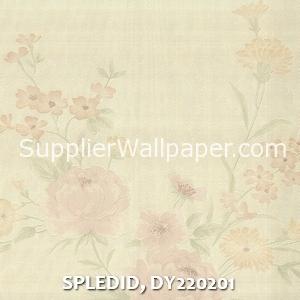 SPLEDID, DY220201
