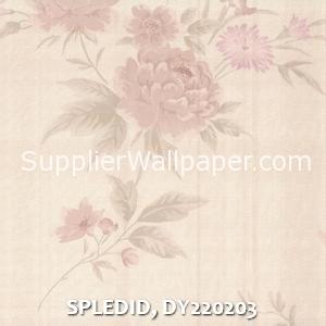 SPLEDID, DY220203