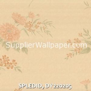 SPLEDID, DY220205