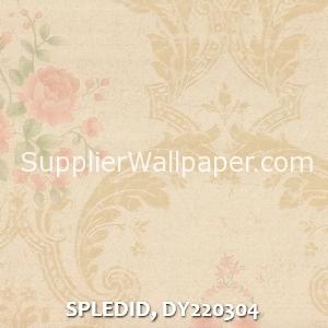 SPLEDID, DY220304