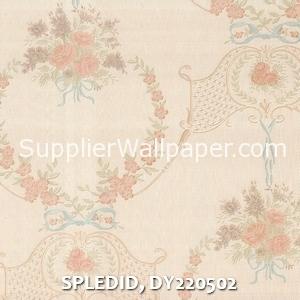SPLEDID, DY220502