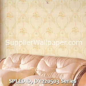 SPLEDID, DY220503 Series