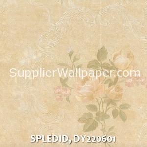 SPLEDID, DY220601
