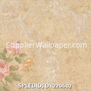SPLEDID, DY220602
