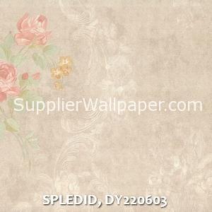 SPLEDID, DY220603