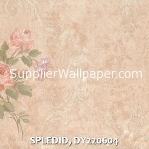 SPLEDID, DY220604