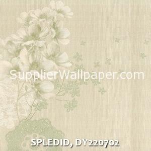 SPLEDID, DY220702
