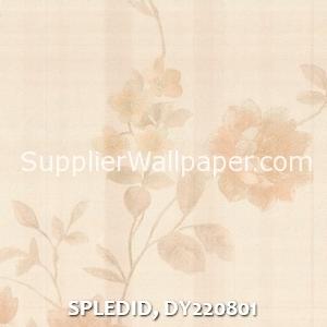 SPLEDID, DY220801
