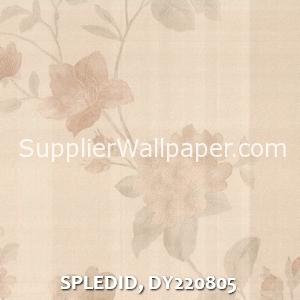 SPLEDID, DY220805
