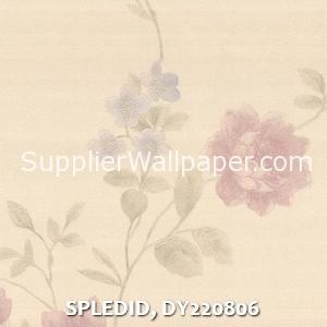 SPLEDID, DY220806