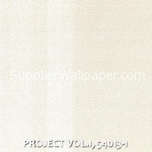 PROJECT VOL.1, 54013-1