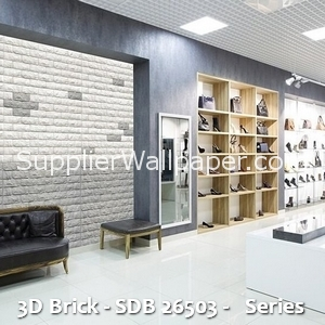 3D Brick - SDB 26503 - Series