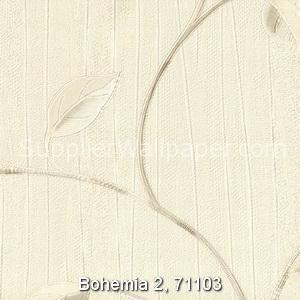 Bohemia 2, 71103