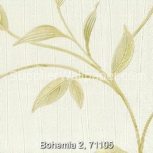 Bohemia 2, 71105