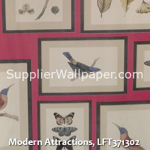 Modern Attractions, LFT371302