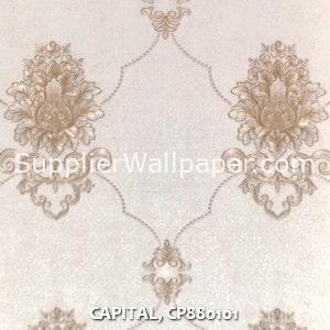 CAPITAL, CP880101