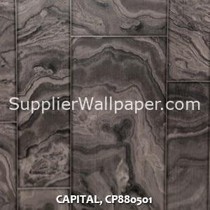 CAPITAL, CP880501