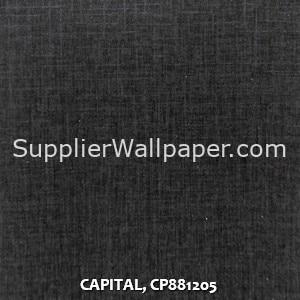 CAPITAL, CP881205