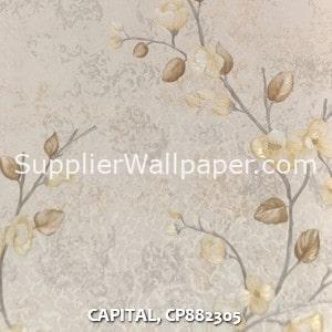 CAPITAL, CP882305