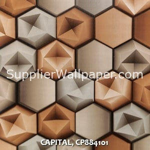 CAPITAL, CP884101