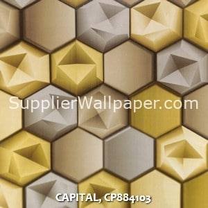 CAPITAL, CP884103