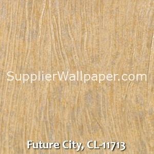 Future City, CL-11713
