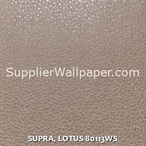 SUPRA, LOTUS 80113WS