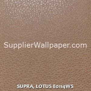 SUPRA, LOTUS 80114WS