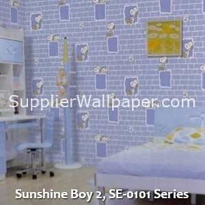 Sunshine Boy 2, SE-0101 Series