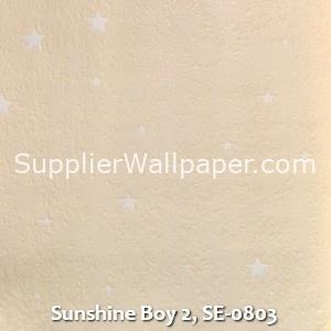 Sunshine Boy 2, SE-0803