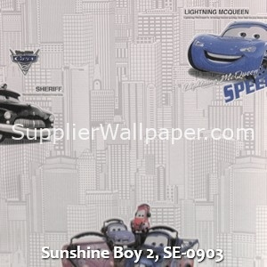 Sunshine Boy 2, SE-0903