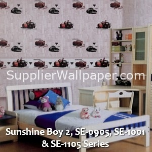 Sunshine Boy 2, SE-0905, SE-1001 & SE-1105 Series