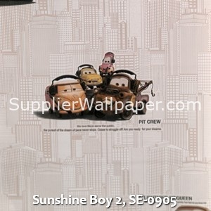 Sunshine Boy 2, SE-0905