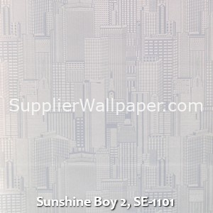 Sunshine Boy 2, SE-1101