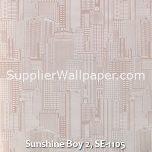 Sunshine Boy 2, SE-1105