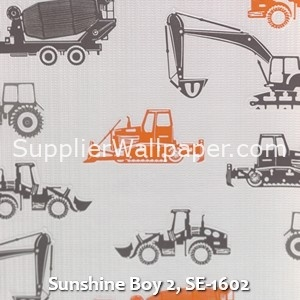 Sunshine Boy 2, SE-1602