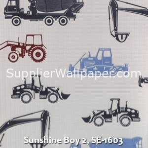 Sunshine Boy 2, SE-1603