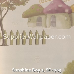 Sunshine Boy 2, SE-1703