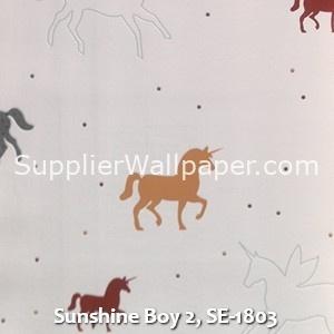 Sunshine Boy 2, SE-1803