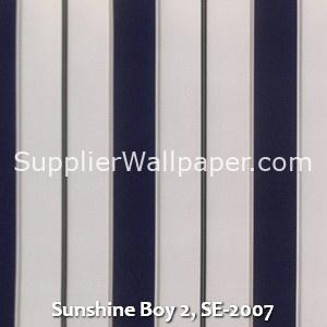 Sunshine Boy 2, SE-2007