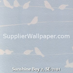 Sunshine Boy 2, SE-2101