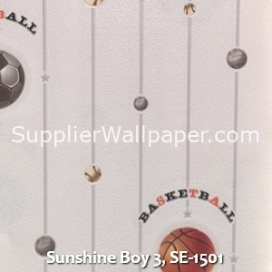 Sunshine Boy 3, SE-1501