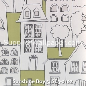 Sunshine Boy 3, SE3-0102
