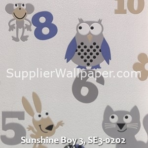 Sunshine Boy 3, SE3-0202