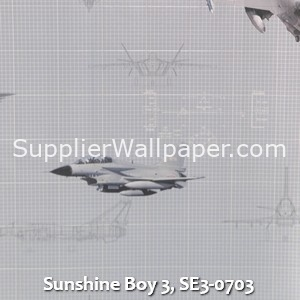 Sunshine Boy 3, SE3-0703