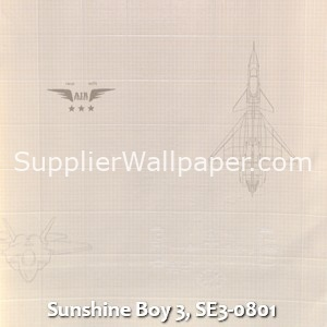Sunshine Boy 3, SE3-0801